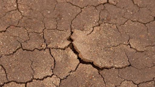 """Como evitar uma """"pandemia de fome"""" induzida pela covid-19 na África Austral?"""